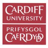 Cardiff University English language & Foundation coursesのロゴです